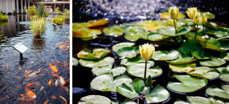 02_national_arboretum_blog