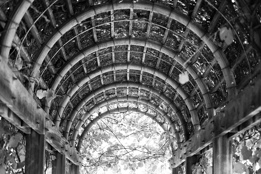 04_national_arboretum_blog