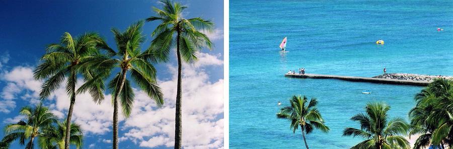 01_hawaii_2003_blog