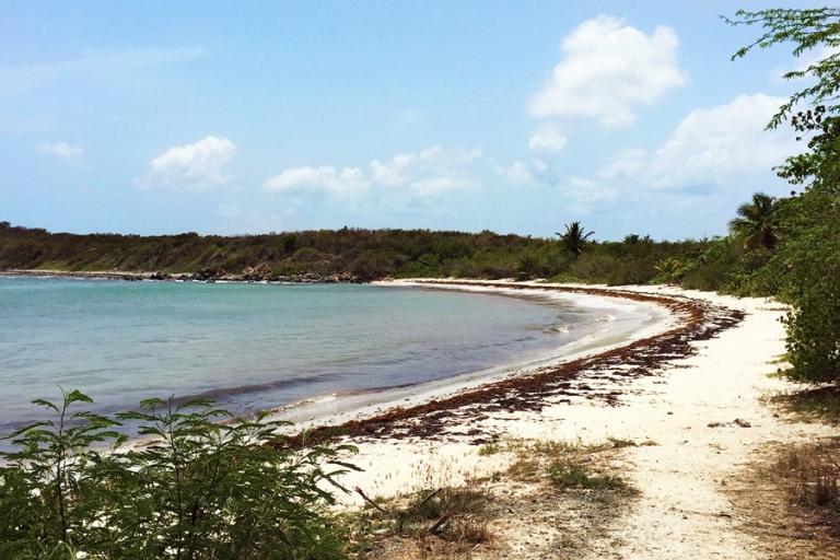 02_vieques_beaches