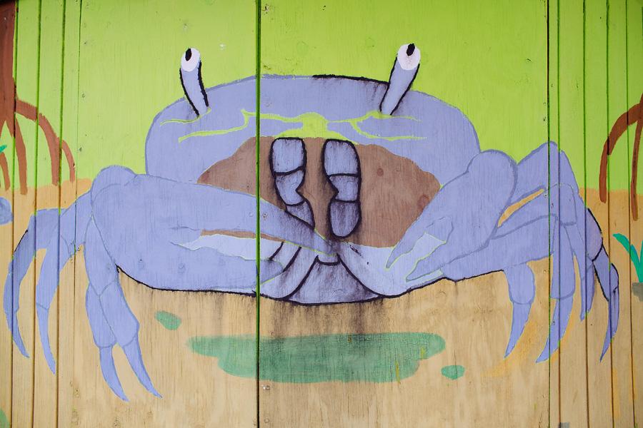 crab_blog
