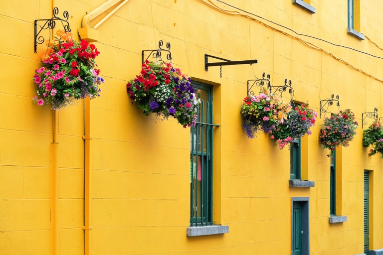 04_kilkenny_kerry_ireland_blog