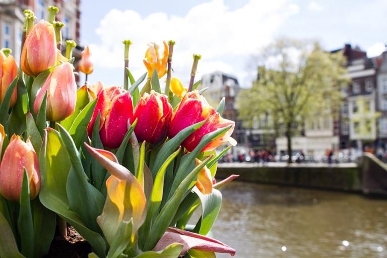 20_amsterdam_blog