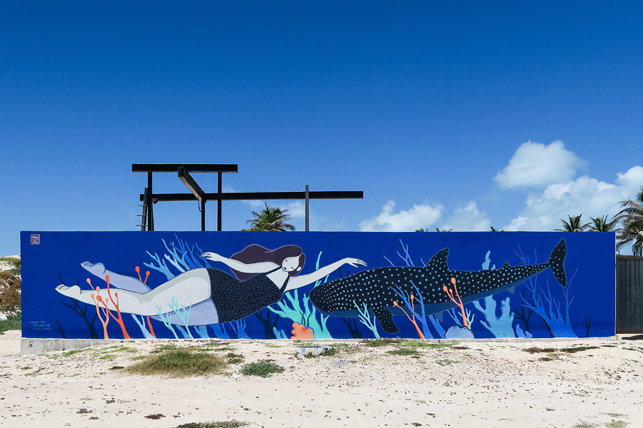 01_isla_mujeres_whale_sharks_blog